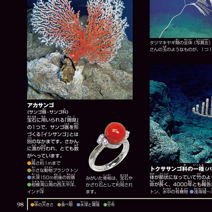 小学館深海生物図鑑